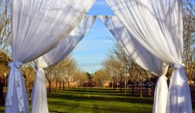 Wedding Items & Arches
